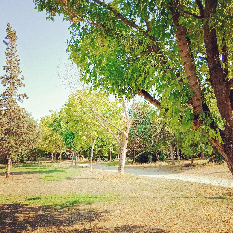 Μία βόλτα στο πάρκο - A walk in the park