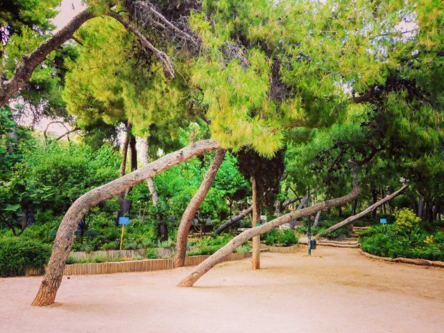 Βόλτα στο πάρκο - Walk in the park