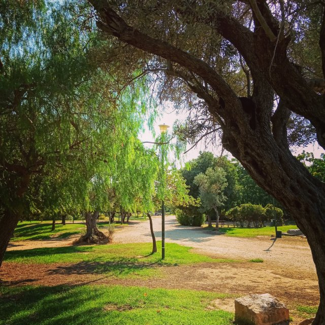 Βόλτα στο πάρκο τής Ακαδημίας Πλάτωνος - A walk in the park of Platonic Academy