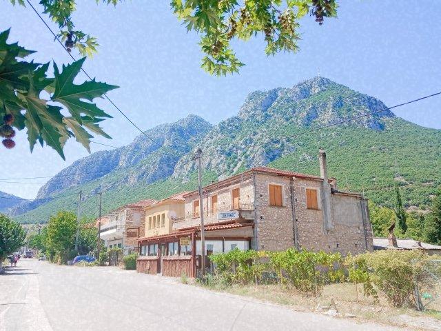 Η Γραβιά Φωκίδας - Village in the mountains