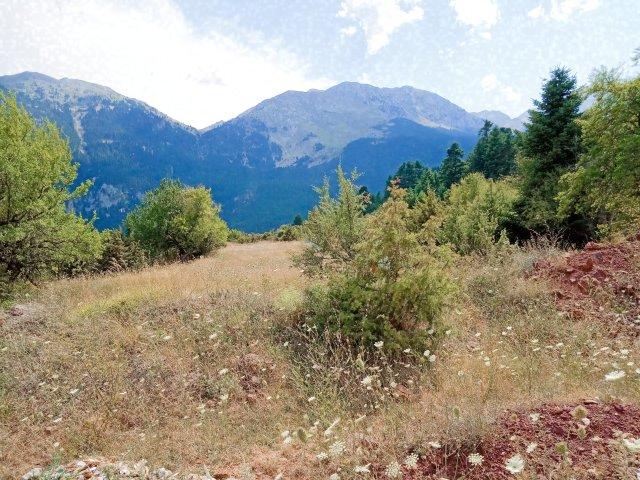 Οι κορυφές της Γκιώνας (Διάσελο) - The top of the mountains