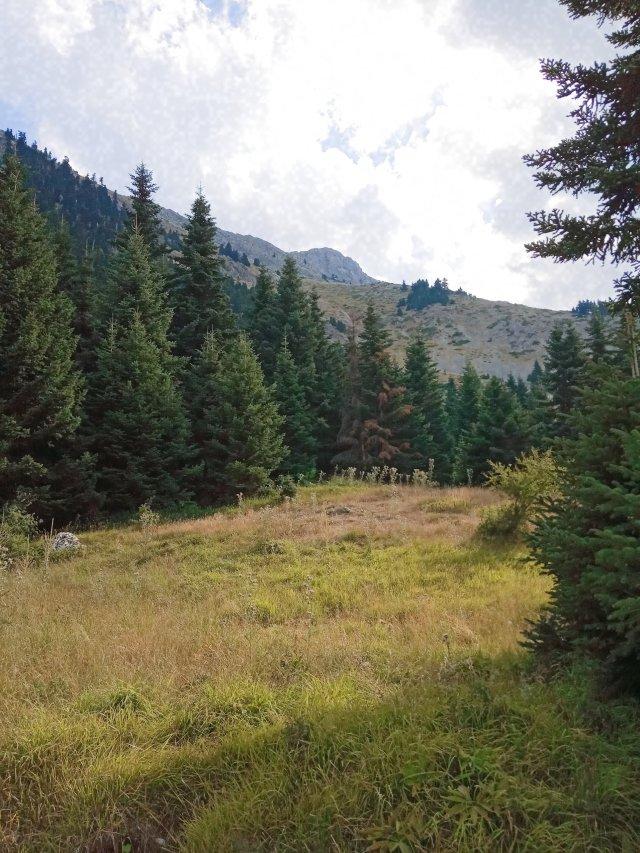 Στην Τράκα - Mountain landscape